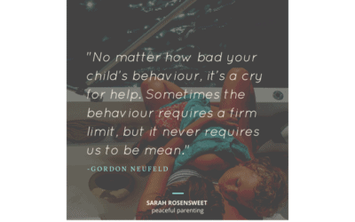 Bad Behaviour Never Requires Us to be Mean