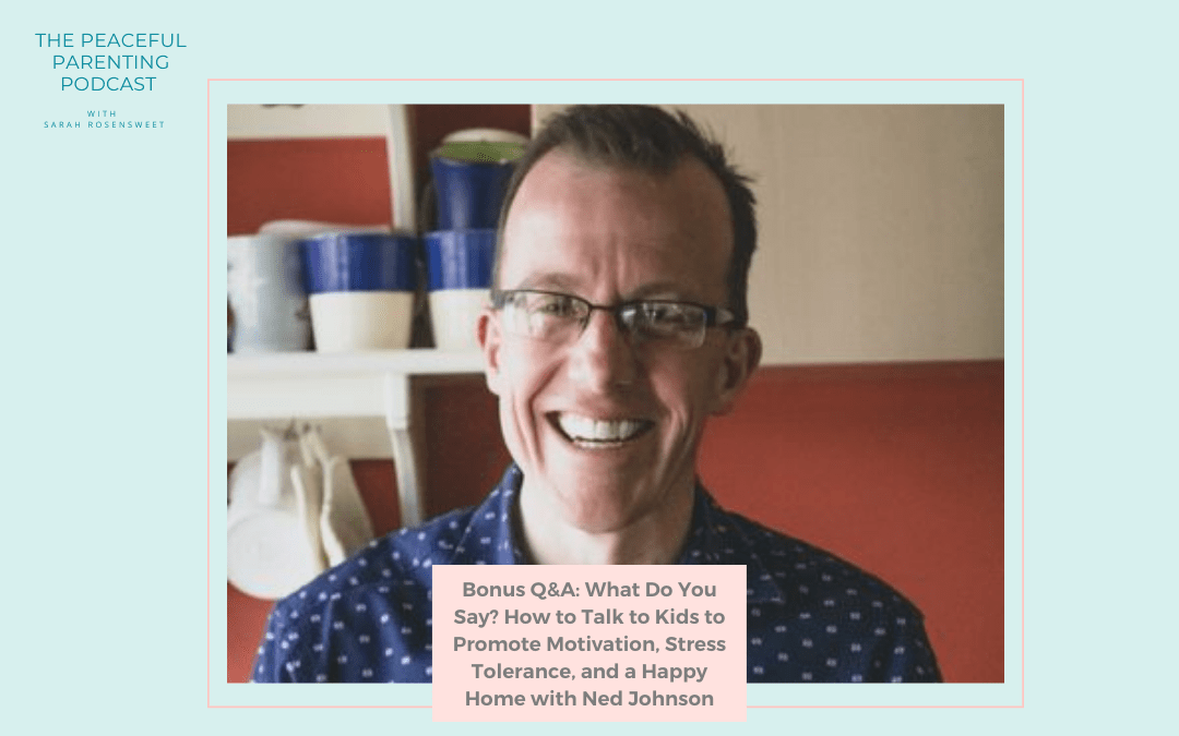 Bonus Q&A: What Do You Say? How to Talk to Kids to Promote Motivation, Stress Tolerance, and a Happy Home with Ned Johnson