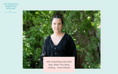 Episode 18: Coaching Call with Ray: After You Stop Yelling… Then What?!